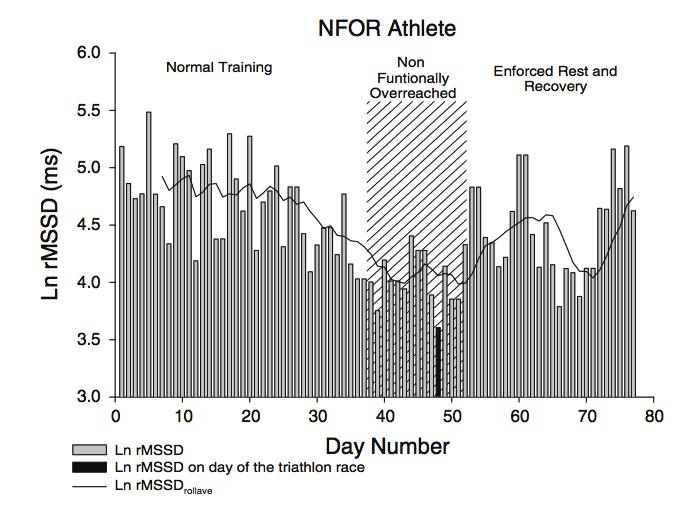 Training adaptation & HRV